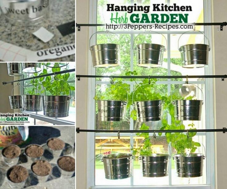 Nice Hanging Herbs In Kitchen Part - 5: Best 25+ Hanging Herbs Ideas On Pinterest   Herb Wall, Indoor Wall Planters  And Rustic Vintage Decor