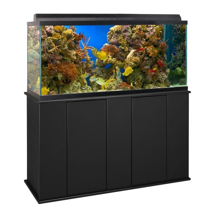 Best 25 75 gallon aquarium stand ideas on pinterest for Fish tank divider 75 gallon