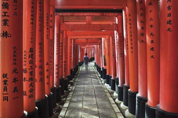 Japanese Pillars: Commercial Photography Travel, Commercial Travel, Commercial Photographytravel, Japan Culture, Business Travel, Taisha Shrine, Red Tory, Kyoto Japan, Glen Allison