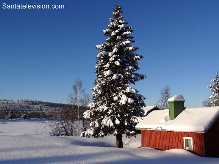 El Valle del Rio Tornio en invierno, en Pello, la Laponia Finlandesa