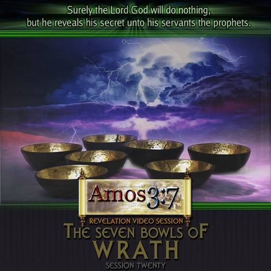 46 best revelation bible study images on pinterest bible studies revelation session 20 the seven bowls of wrath a video commentary with notes pdf and fandeluxe Images