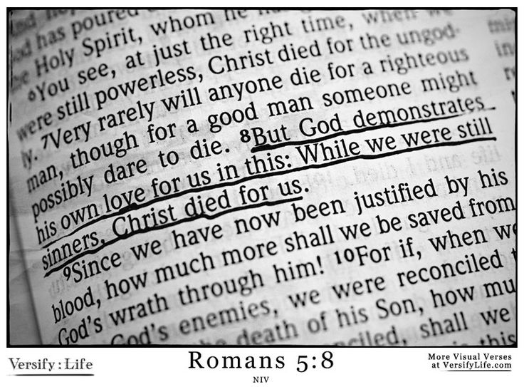 54 best romans bible verse images images on pinterest romans but god demonstrates his own love for us in this while we were still sciox Choice Image