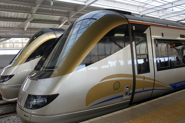 Gonna miss taking the Gautrain to visit my friends!