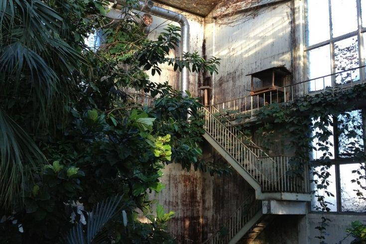 Abandoned Irozaki Jungle Park, Izu peninsula, west of Tokyo, Japan