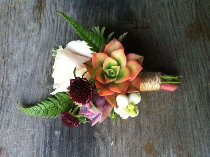 September boutonniere with succulents, rose, scabiosa buds, ferns and snowberry by Flying Bear Farm+ Design - Photo by Melissa Brown of Flying Bear Farm
