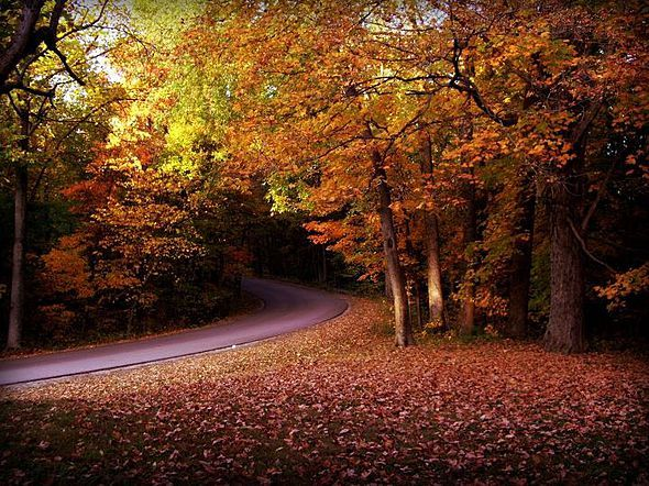 Collection of Beautiful Fall Foliage Pictures | beautiful ...
