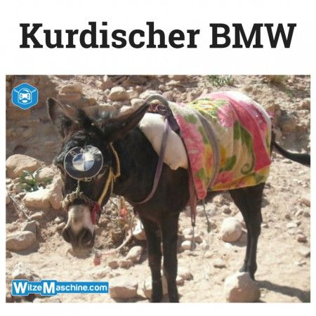 Kurden Witze - Kurdischer BMW - Esel