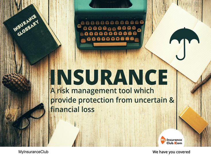 Risk Management and Insurance how to do a writing