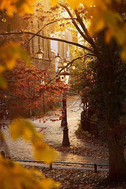 Fall somewhere...