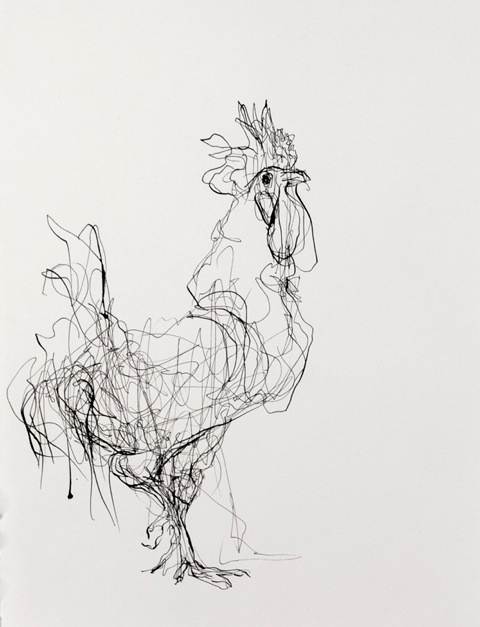 """""""Rooster (Facing Right)""""  Artist Susan Siegel  10.5"""" x 15.5""""  Sumi Ink on Paper  2012"""