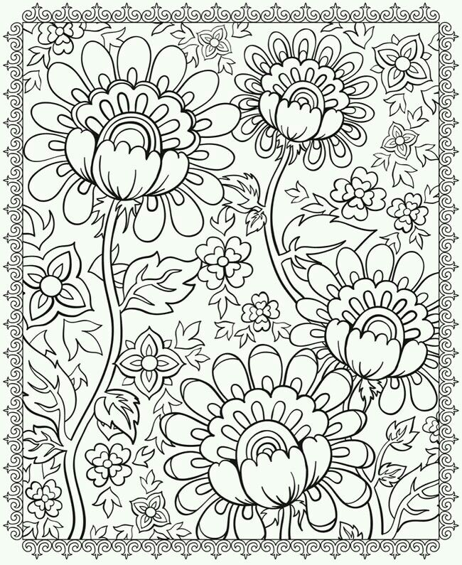 24469a04308e8f4b56b532df7a1e6969 Adult Coloring Book Pages Colouring For Adults