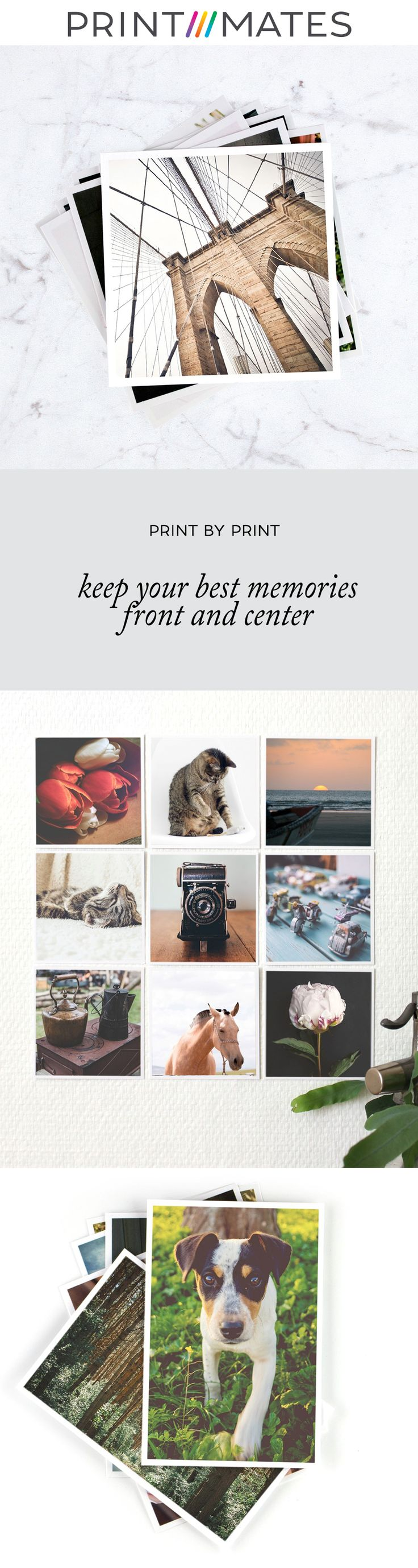Print Mates dedicates itself to turning your memories into works of art you will cherish. We make the highest quality reproductions of your photos in a wide array of mediums, including prints in all shapes and size on quality photo paper, metal, wood and canvas.  #photogifts #frames #photography #love #photoalbums #travel #quotes #fashion #blogger #vacation #decorating #motivationalquotes #coffee #photooftheday #Prints