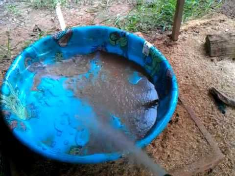 How I keep water for my ducks clean - great idea for creating a drain within a kiddie pool