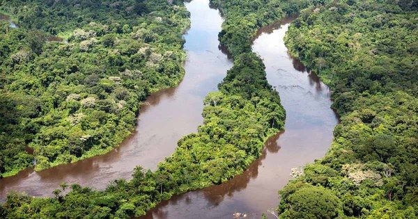 """HALLELUJAH!  """"The Brazilian government announced Monday that it has reversed President Michel Temer's decree last month to open up a protected Amazon reserve to mining. """""""