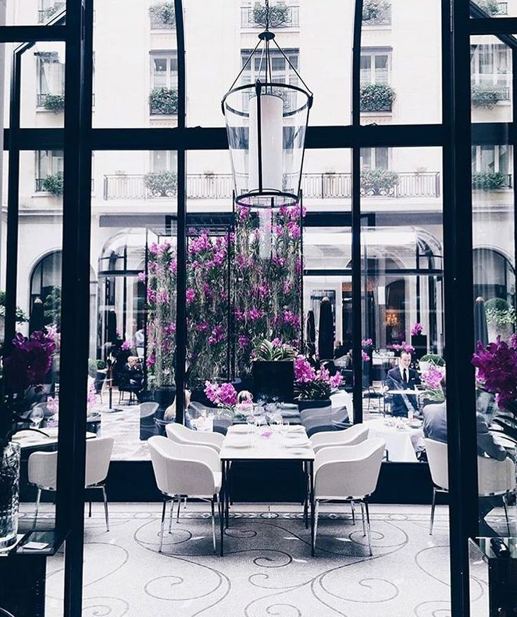 The sun is slowly rising up in #Paris, it's a foggy morning, the perfect moment to enjoy a peaceful overview of our very intimist and chic restaurant L'Orangerie ✨  #lorangerieparis #davidbizet #maximefrederic #fsparis #georgeV #parisjetaime #finedining #michelinguide #gaultmillau @ miss_gunner