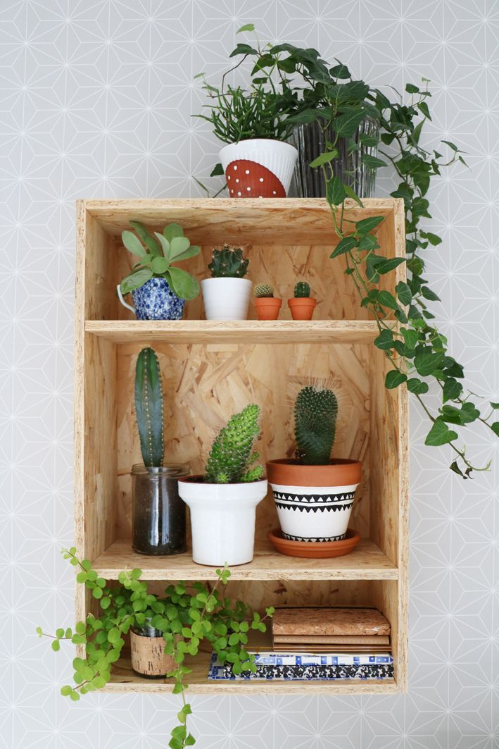 Urban Jungle Bloggers: Plantshelfie 2 by @myattic