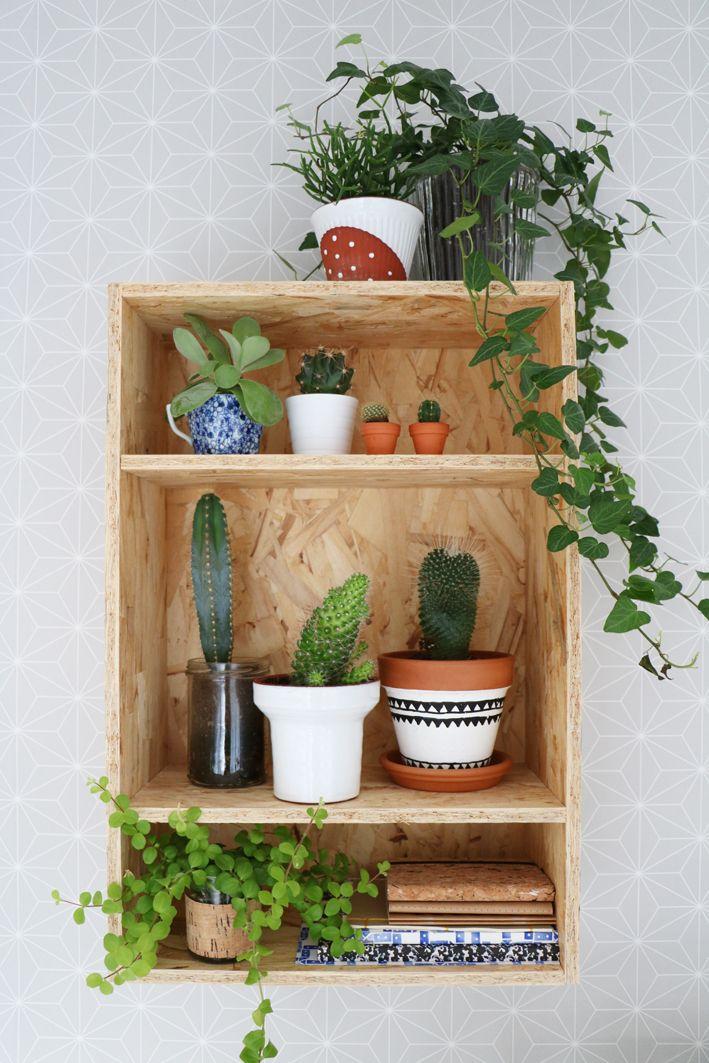 Urban Jungle Bloggers: Plantshelfie 2 by @myattic