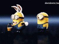 minions rabbit animated GIF