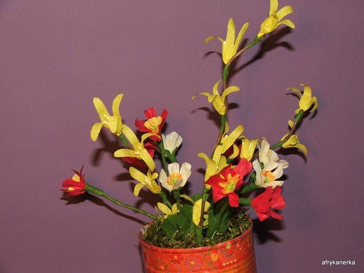 Forsycja i pierwiosnki z bibuły (Flowers tissue-paper)