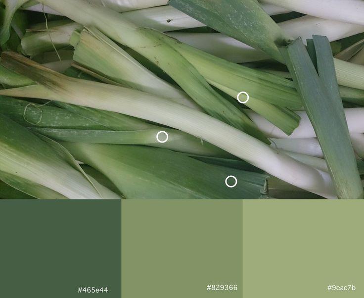 Verde (6) Verde (7) Verde (8)