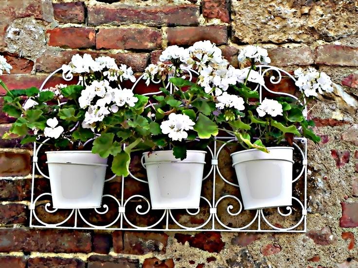 3 white pots
