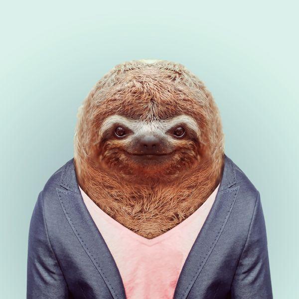 Zoo Portraits zoo-portraits-23 – TrendsNow