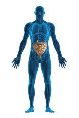 Bioresonance Allergy Test Service From Advanced Health.