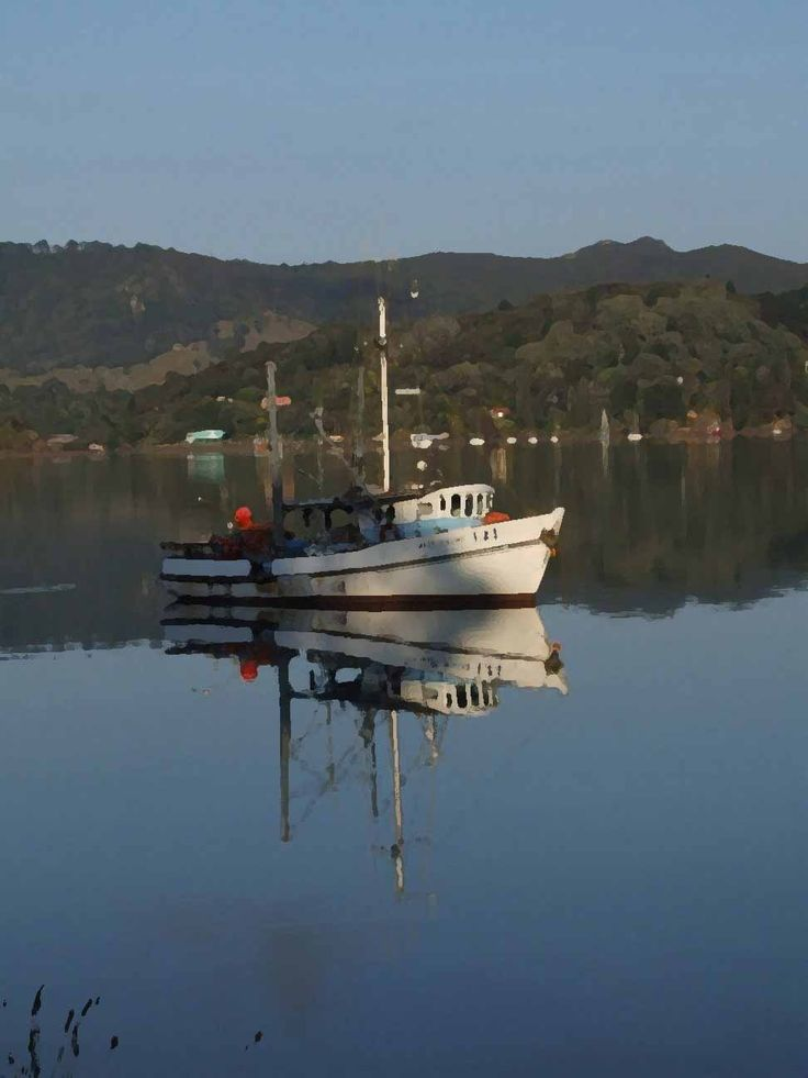 Boat at Whagapoua Harbour, Northland, NZ