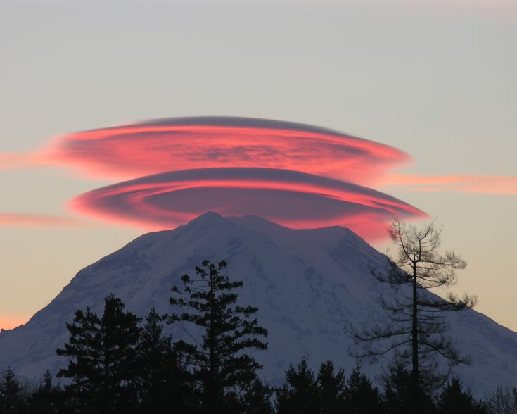 Mt. Rainier - Lenticular clouds (Altocumulus lenticularis), stationary lens-shaped clouds that form at high altitudes, normally aligned perpendicular to the wind direction.