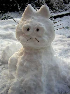 Weekend Cook: snow kitty
