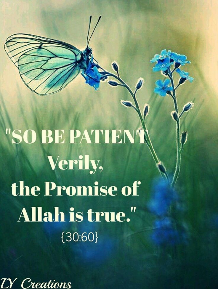 So be patient verily, the promise of Allah is true ...
