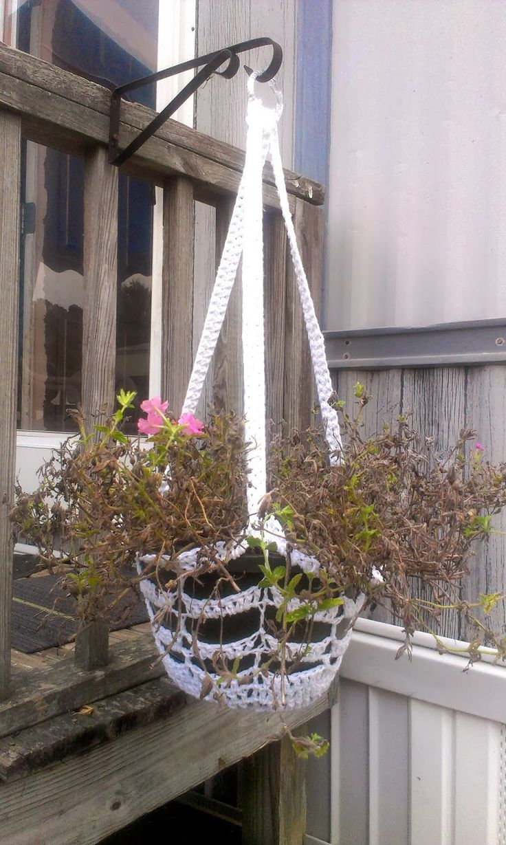 Crochet Hanging Flower Basket Pattern : 17 Best images about Crochet - Plants on Pinterest ...
