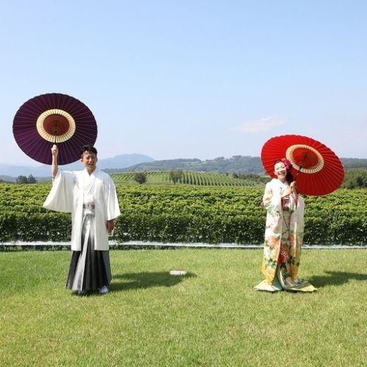 静岡県、中伊豆の広大なぶどう畑の中に佇むワイナリーで♡国内リゾートでの結婚式一覧♡ウェディング・ブライダルの参考に!