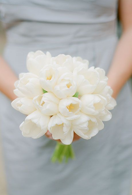 Simple Bouquet of All-White Tulips | Brides.com