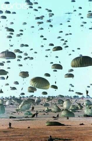 this thought goes with the Ribs picture because I have lived my life as an Airborne trooper and it should be in week 3 gamificaton  that I am brave and also ties in to my business BadAssMedicBBQ in week 3 assignment
