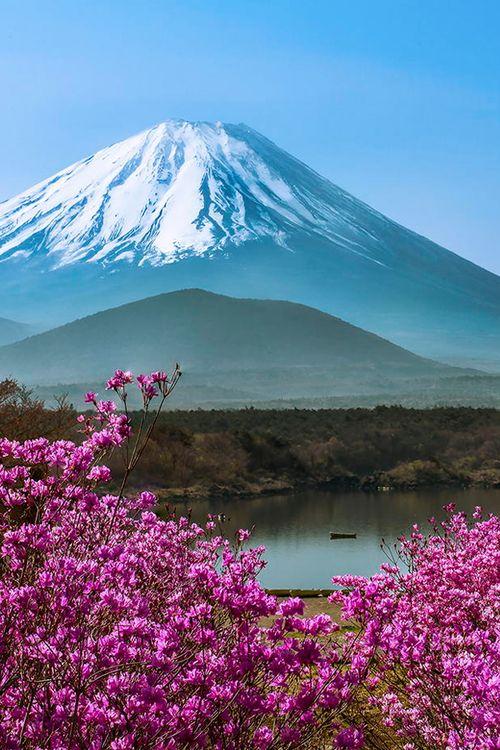 Mount Fuji and Lake Shoji, Yamanashi, Japan