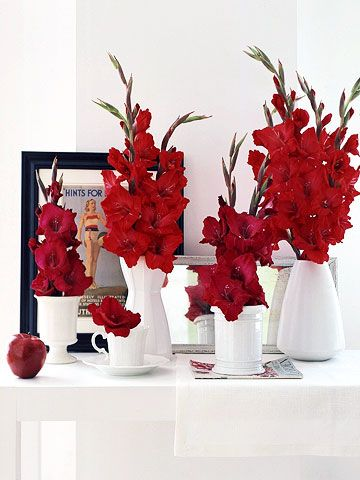 Drama On Display: Go for contrast with a flower as vivid as these red gladiolas. Track down all the white porcelain in your home: vases, teacups, dessert cups, wide bowls, and coffee mugs. Fill with water and add glads cut to different heights. Place several stalks in the larger containers and just one flower in the smaller ones.