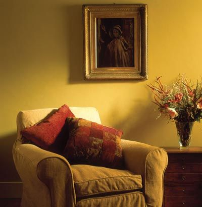 Google Image Result for http://heritage.trade-decorating.co.uk/web/images/content/inspiration/large/rich_colour_with_yellow_ochre.jpg