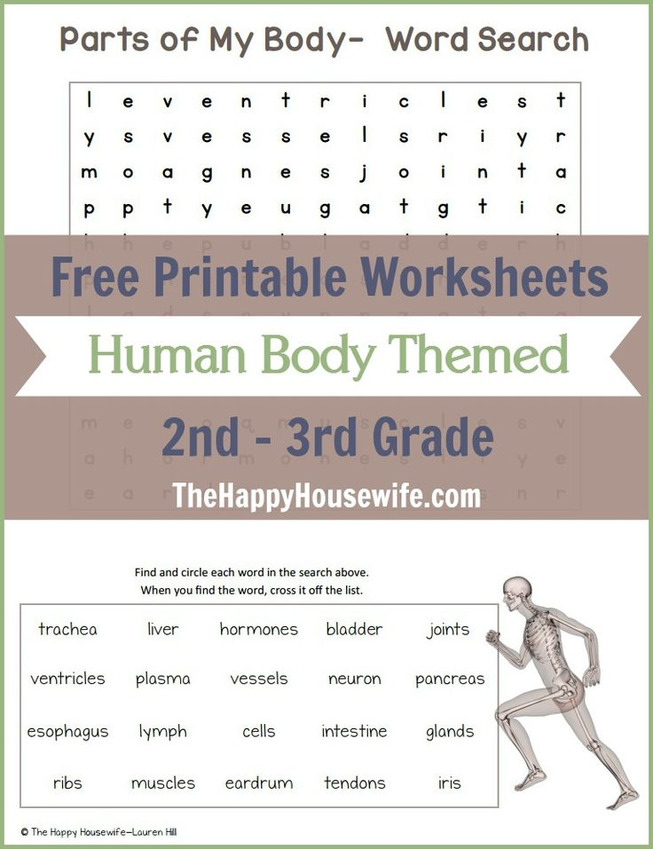 Free Printable Human Body Themed Worksheets for 2nd - 3rd Graders. Includes math and language arts activities