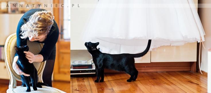Przygotowania Panny Młodej, kot na ślubie | https://www.facebook.com/AnnaTyniecFotografie | fotografia ślubna Wrocław | Anna Tyniec