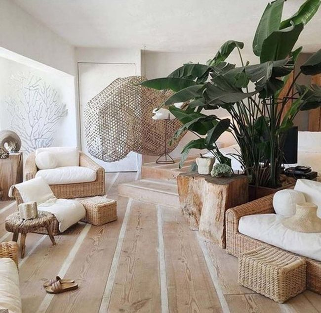 23 images that show how to style indoor plants - Vogue Living