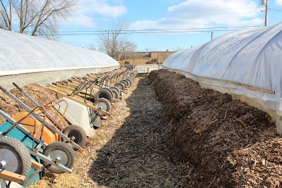 compost against  greenhouse wall helps retain heat