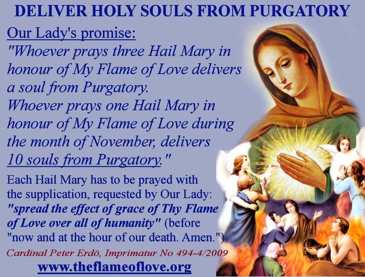 The Virgin Mary made the following promise for the benefit of the Holy Souls in Purgatory, especially in the month of November, let's empty the Purgatory with our Hail Mary's said with this special supplication requested by Our Lady! www.flameoflove.us