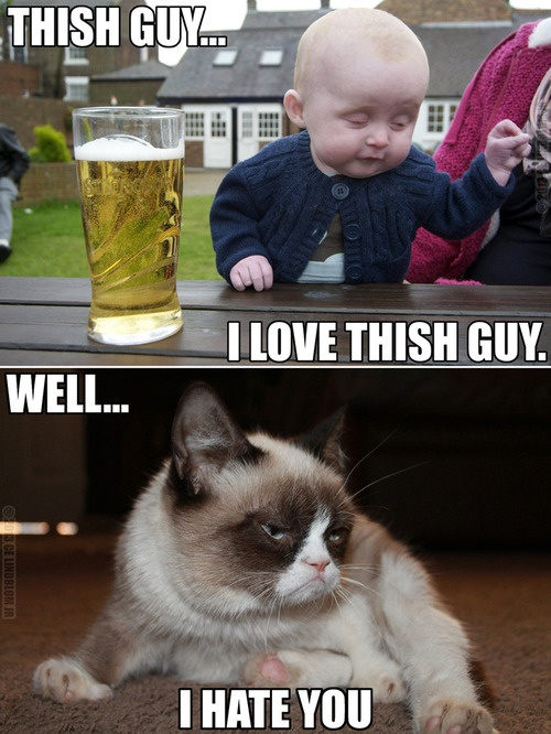 Grumpy cat hates inebriated babies