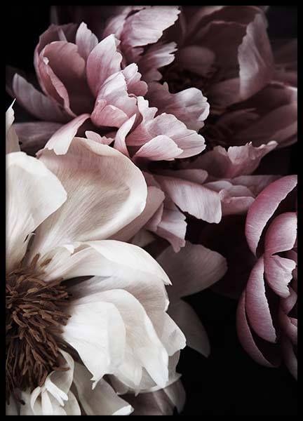 Botanik Poster | Poster mit Blumen und Pflanzen | …