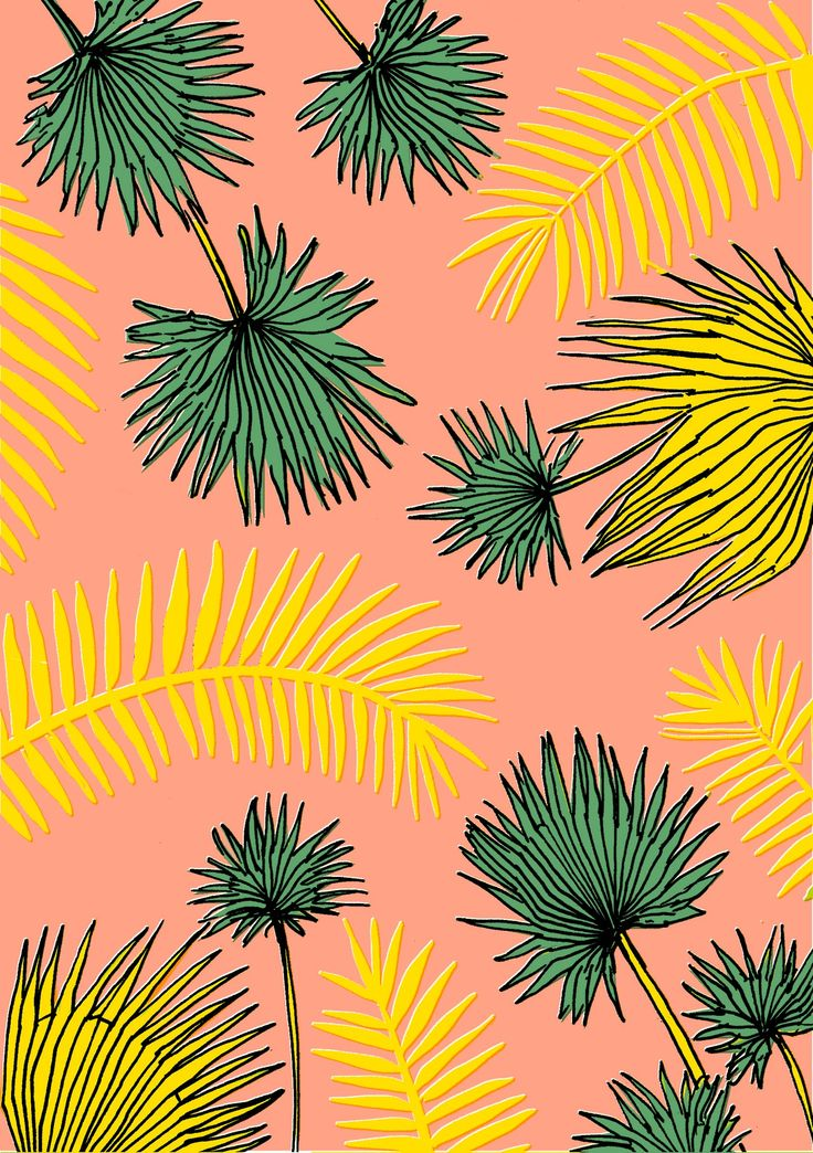 Elena Boils Illustration