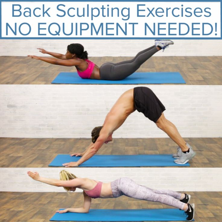 Body Weight Back Sculpting Exercises