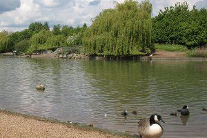 Beckton District Park - A Beckton Lake Angler's Card is required to fish at Beckton District Park North only.  Noday tickets are issued.  Carp to 28lb.... Check more at http://carpfishinglakes.com/item/beckton-district-park/