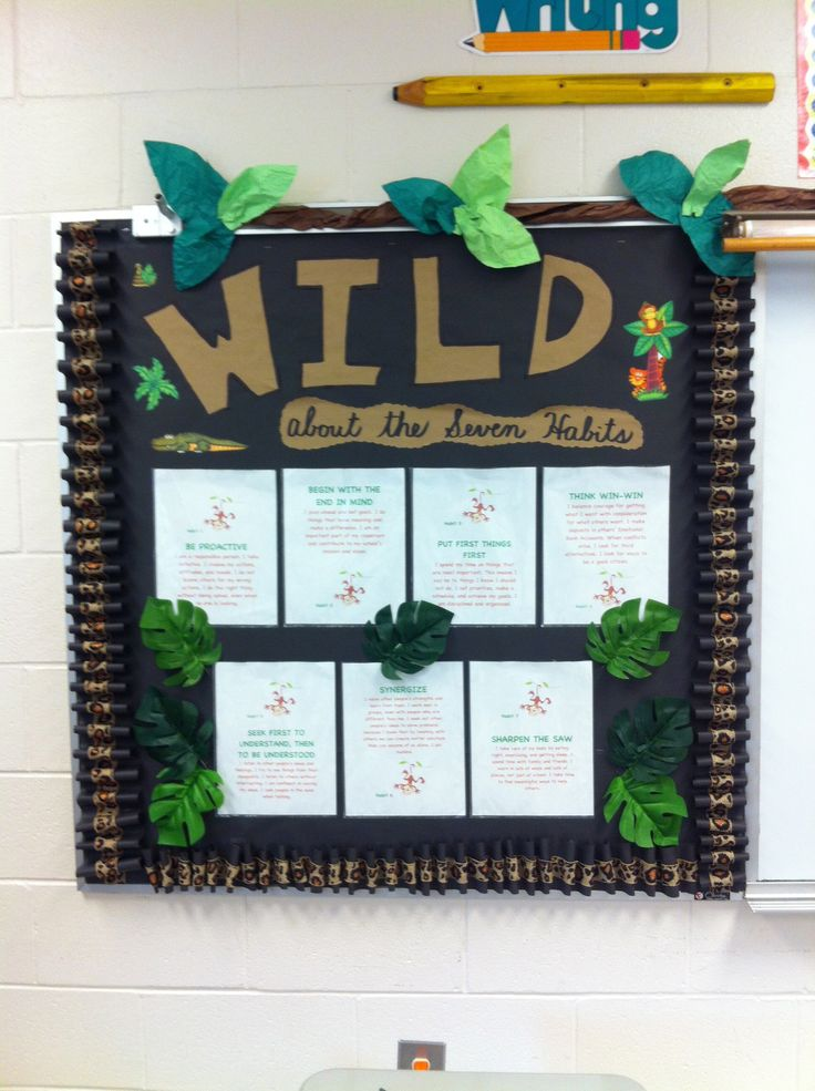 1000 ideas about safari bulletin boards on pinterest for 7 habits decorations