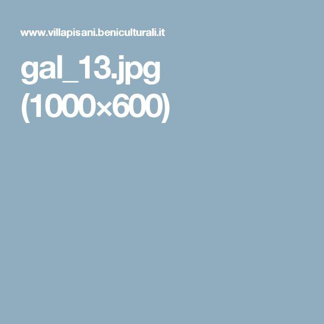 gal_13.jpg (1000×600)